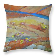 Canyon Dreams 23 Throw Pillow