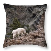 Canyon Goat 1 Throw Pillow by Roger Snyder