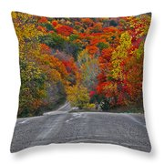 Canyon Hill Throw Pillow