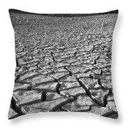 Canyon Lake Bed Throw Pillow