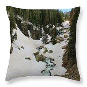 Canyon Scenery Throw Pillow