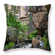 Canyon Serenity - Crazy Woman Creek - Crazy Woman Canyon - Johnson County - Wyoming Throw Pillow