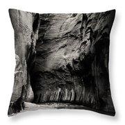 Canyon Trail 3 Throw Pillow