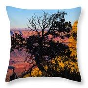 Canyon Tree Throw Pillow