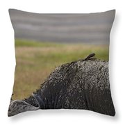 Cape Buffalo And Bird   #9873 Throw Pillow