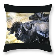 Da206 Cape Buffalo By Daniel Adams Throw Pillow