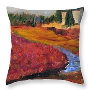 Cape Cranberry Bog In Season Throw Pillow