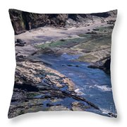 Cape Foulweather 1 Throw Pillow