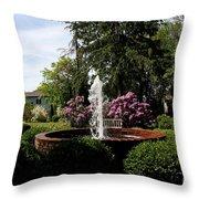 Cape Henlopen Park Throw Pillow