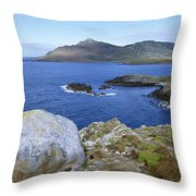Cape Horn National Park Patagonia Throw Pillow
