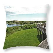 Cape May Hawk Watch Throw Pillow