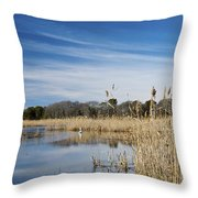 Cape May Marshes Throw Pillow