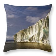 Cape Roget Antarctica In The Midnight Sun Throw Pillow