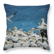 Cape St. Mary Ecological Resrve Throw Pillow