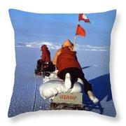 Capeevans-antarctica-g.punt-3 Throw Pillow