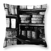 Capeevanshut-antarctica-g.punt-14 Throw Pillow