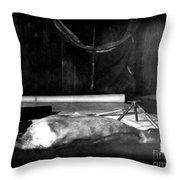 Capeevanshut-antarctica-g.punt-18 Throw Pillow