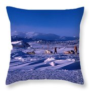 Capeevanshut-antarctica-g.punt-6 Throw Pillow
