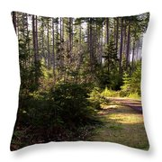 Capitol Forest Logging Road Throw Pillow