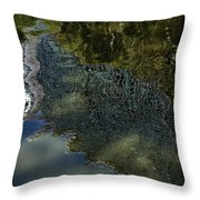 Capricious Green Sunspots Shadows And Reflections Throw Pillow