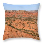 Caprock Canyon 1 Throw Pillow