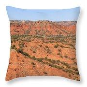Caprock Canyon 1 Throw Pillow