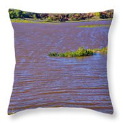 Caprock Canyon-lake Scenic Throw Pillow