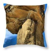 Caprock Mushroom Throw Pillow