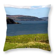 Captain Frasers Folly Tower Throw Pillow