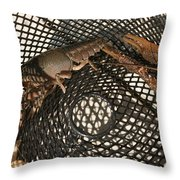 Captured Crawdaddies Throw Pillow