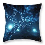 Captured Stars Throw Pillow