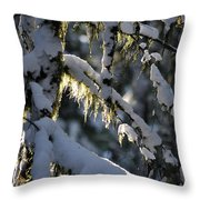 Capturing The Warmth Throw Pillow