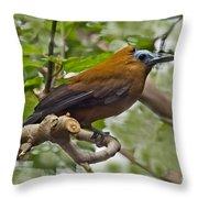 Capuchinbird Throw Pillow