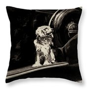Car And Dog Throw Pillow