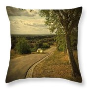 Car On Road Throw Pillow by Carlos Caetano