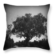 Car Parked Under A Tree Throw Pillow