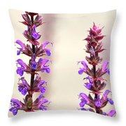 Caradonna Salvia Flowers Throw Pillow