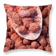 Caramelized Peanuts Throw Pillow