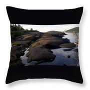 Carden Cove Throw Pillow