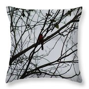 Cardinal Amongst The Branches Throw Pillow