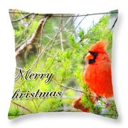 Cardinal Christas Card Throw Pillow