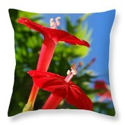Cardinal Climber Flowers Throw Pillow