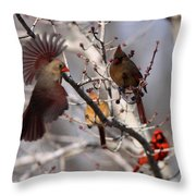 Cardinal Colony Throw Pillow