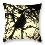 Cardinal Contour Throw Pillow
