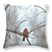 Cardinal Delight Throw Pillow