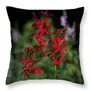 Cardinal Flowers Throw Pillow