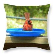 Cardinal Frisbee Throw Pillow