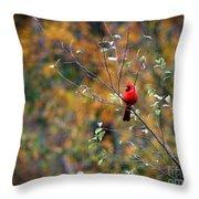 Cardinal In Autumn Throw Pillow