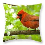 Cardinal In Red Throw Pillow