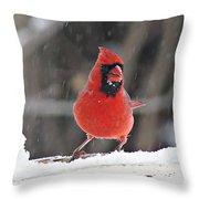 Cardinal In Snowstorm Throw Pillow